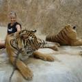 tiger temple kontroverza hram tigrova tajland