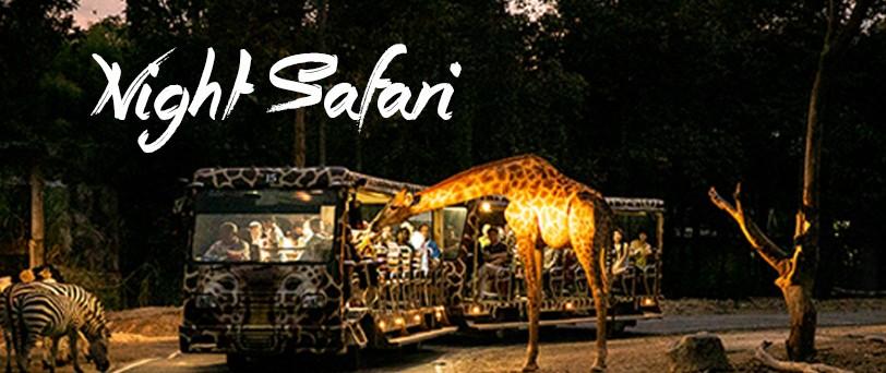 Chiang Mai Night Safari – Chiang Mai izleti