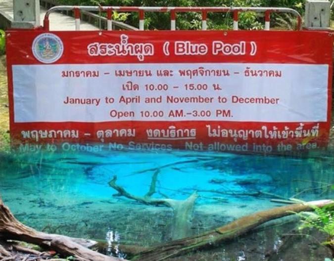 emerald pool krabi thaimer tajland putovanje