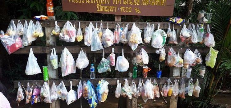 Od danas je u svim tajlandskim nacionalnim parkovima zabranjeno unositi plastiku i stiropor
