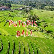 Bali putopis