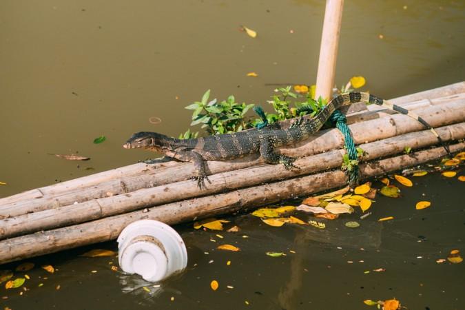 putopis-bangkok-grad-u-kojem-nikada-nije-dosadno-01